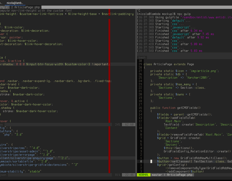 Code editing inside a typical VIM session